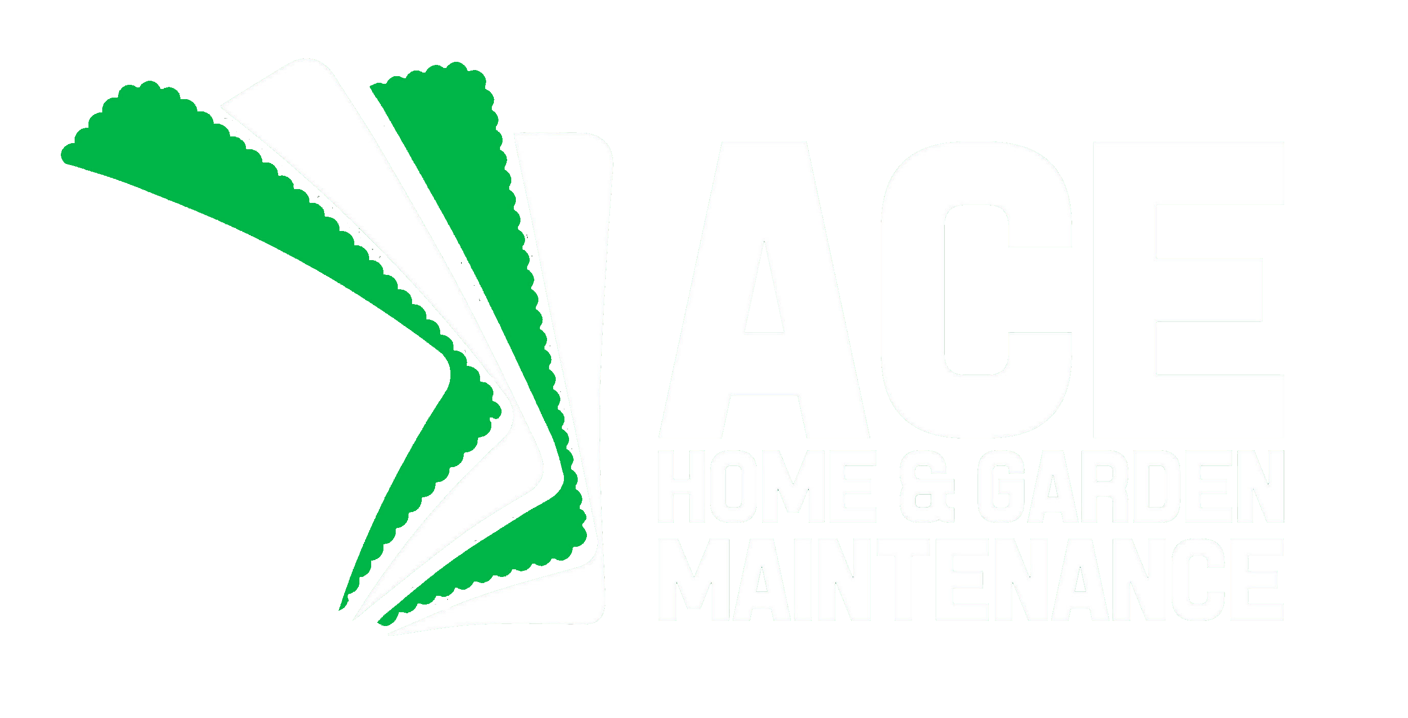 ACE LOGO transparent